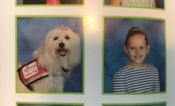 Because of JJ, KK goes go school. Her classmates love and respect JJ, who is even in the yearbook. (All photos courtesy Angel Paws for KK on Facebook)