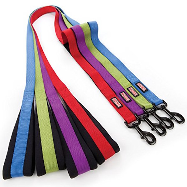 Bungee leash by Kong.