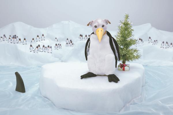 penguin-thumb