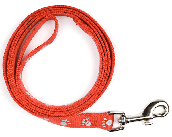 Leash by Shutterstock.