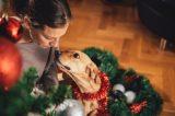 Woman, dog and Christmas tree.