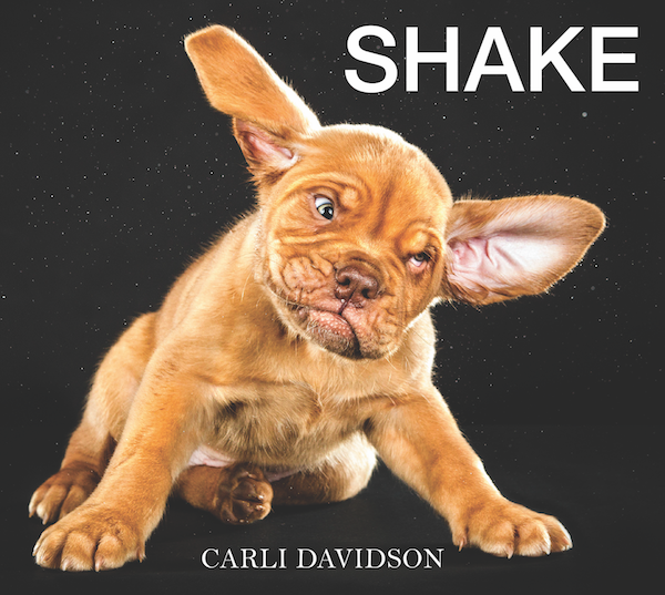 Expert animal photographer and best-selling author Carli Davidson's collective works are a wonderful look at the hilarity of dogs bound to entertain all dog lovers. Both Shake and Shake Puppies are New York Times Bestsellers.