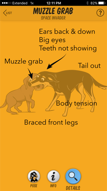 The muzzle grab in context. (Image from the Dog Decoder smartphone app/illustration by Lili Chin)