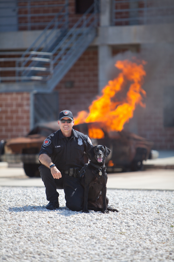 Ace accelerant detector Kai is one of dozens of dogs who support San Antonio's K-9 program. (Photo by Albert Pedroza/SAFD)