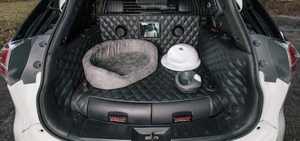 dear nissan please turn the x trail 4dogs concept car into a reality. Black Bedroom Furniture Sets. Home Design Ideas