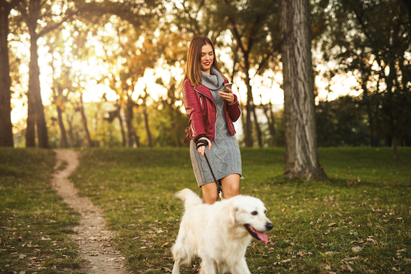 Woman texting while walking dog by Shutterstock