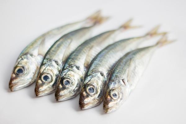 Sardines by Shutterstock.
