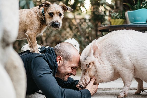 Actor Jonathan Slavin with one of his rescue dogs —and his rescue pig.