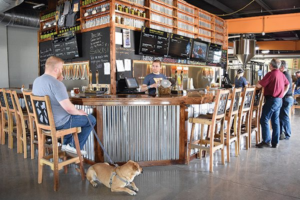 Metazoa-Brewing-Co is a dog-friendly brewery.