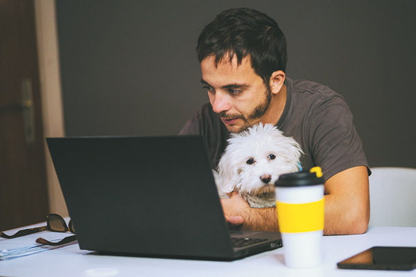 A man holding his dog as he types on the computer.