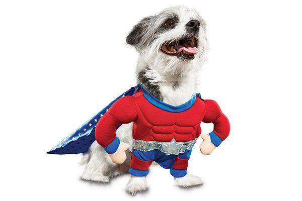 Superheroes costume.