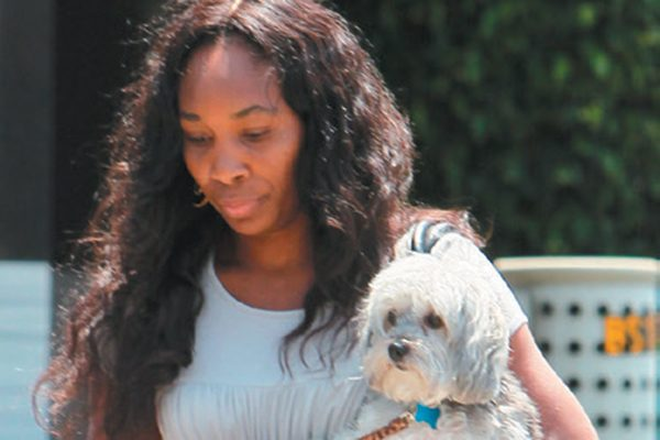 Venus Williams with her Havanese dog.
