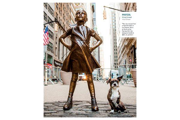 Pretzel, Manhattan, Wall Street.