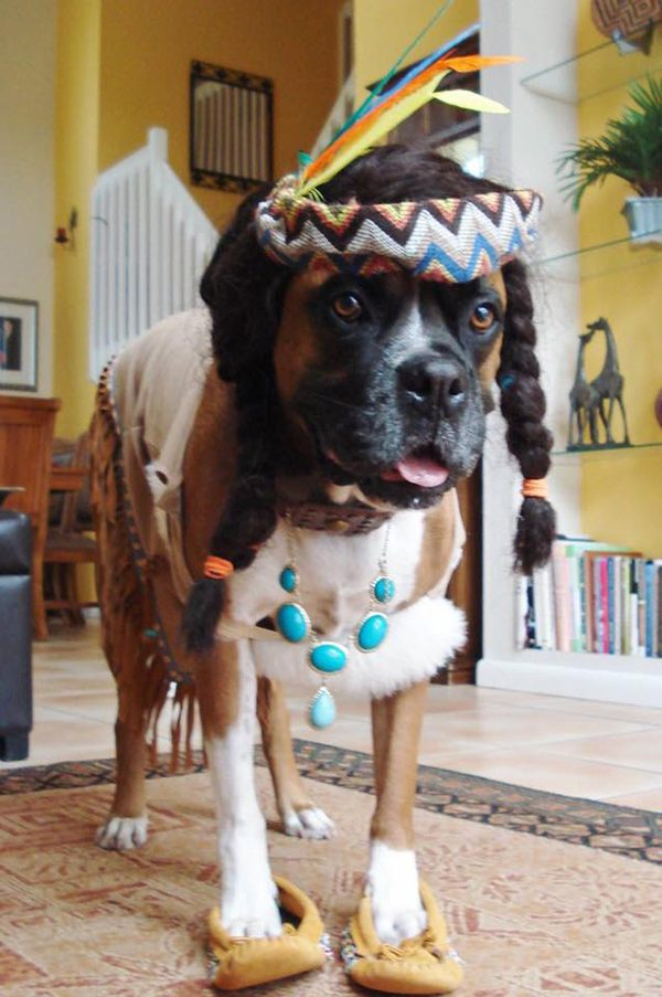 Simba as a Native American. Submitted by Facebook user Stephanie Thompson.