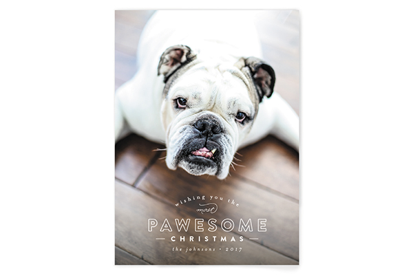 minted holiday cards for dog lovers - Pet Holiday Cards