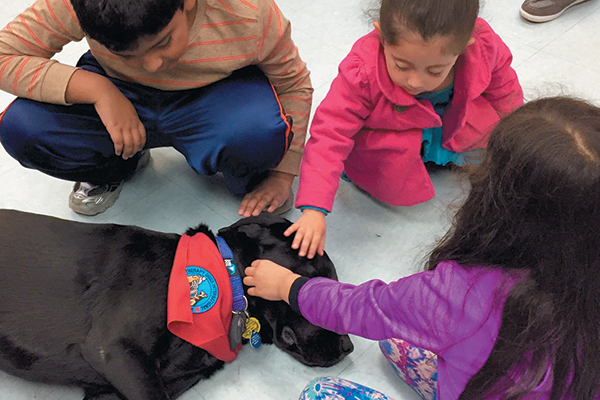 "As a certified therapy dog, Dagger has a variety of duties, such as visiting children at a library for the ""Read to me Program."""