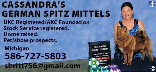 Cassandra's German Spitz Mittels.