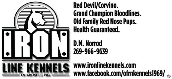 Ironline Kennels.