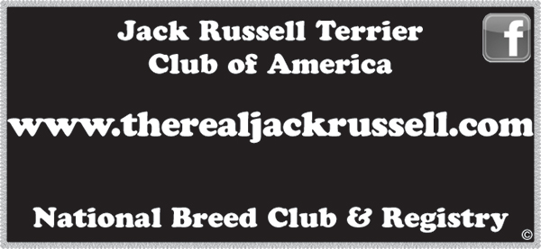 Jack Russell Terrier Club of America.