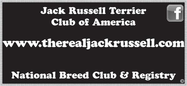 Jack Russell Terrier Club of America.