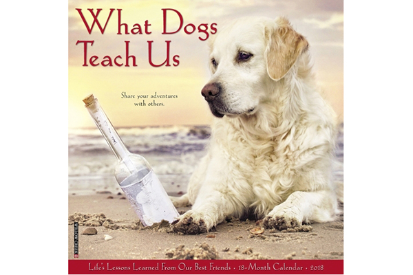 What Dogs Teach Us.