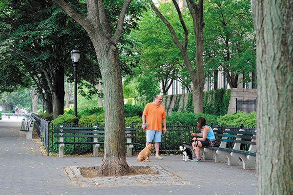 Battery Park City.