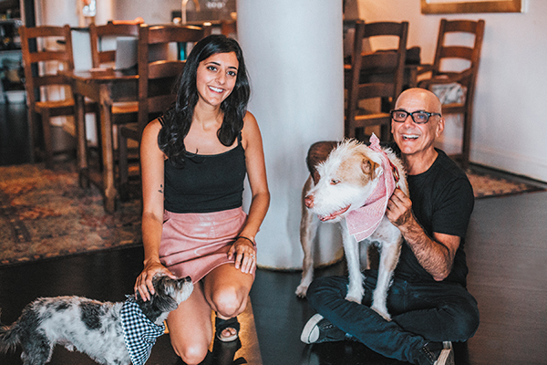 Dug Up at Dogster: Don't Miss These January 2018 Canine Occasions