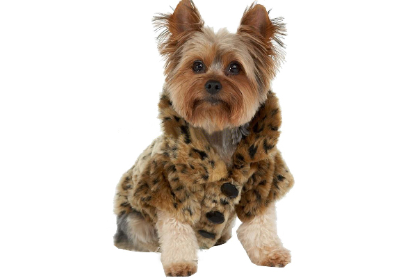Faux fur dog jacket.