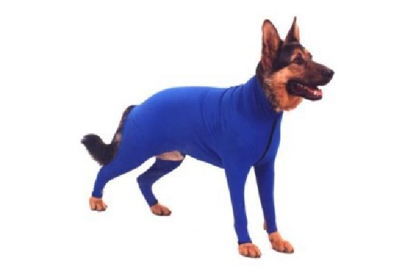Dog sun-protection dog coat.