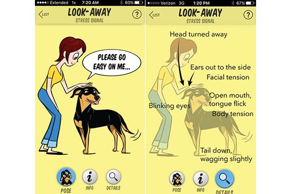 A Dog Look A