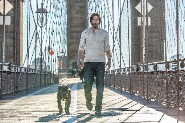 Dog from John Wick 2.
