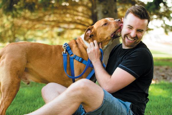 A dog joyfully licking a man.