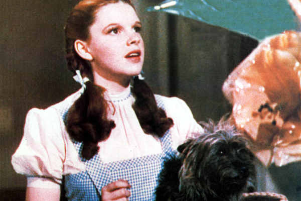 What Was Dorthy S Dog S Name In The Wizard Of Oz