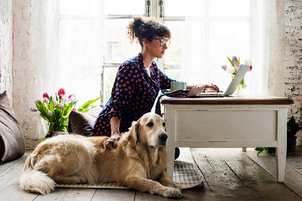 Hip woman at a computer with her dog.