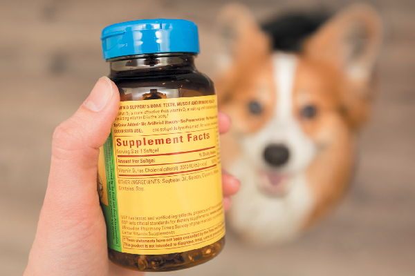 A dog with bottle of supplements or vitamins.