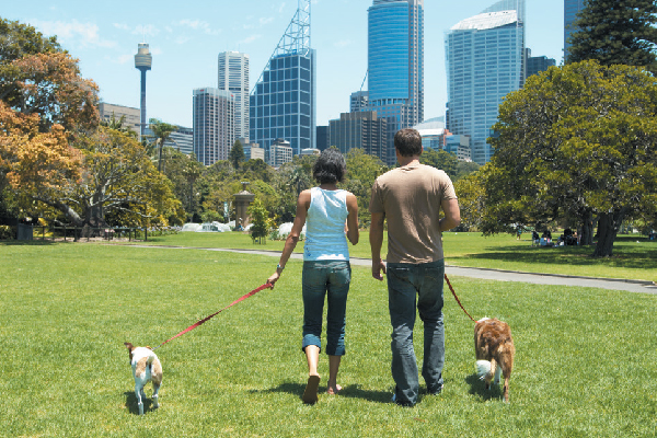 Two people taking their dogs for a walk in a park.