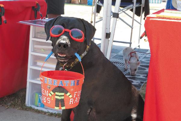 America's Family Pet Expo.