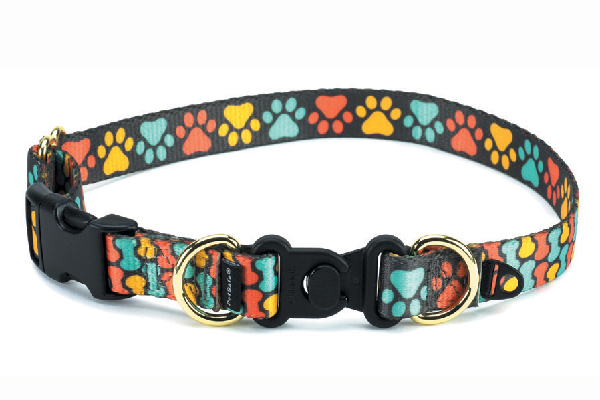 Break-away collar from PetSafe (petsafe.com).