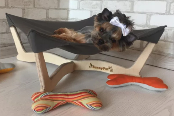 Personalized Dog Hammock, Funny Pet ($35.09). https://www.etsy.com/shop/FunnyPet https://www.etsy.com/listing/477954394/personalized-dog-hammock-cat-hammock-dog