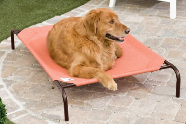 Elevated Pet Bed - Terra Cotta, Coolaroo ($15.01). hayneedle.com https://www.hayneedle.com/product/coolarooterracottadeluxepetbed1.cfm