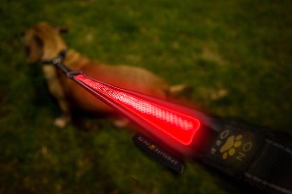 Premium LED Flashing Dog Leash USB Rechargeable, Spotlite ($20.99). amazon.com