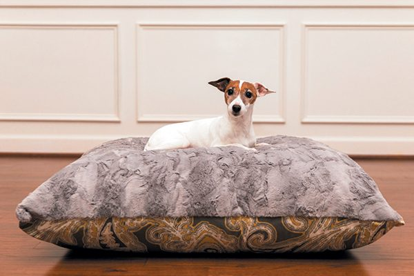 Ritzy Rex Grey and Yellow Paisley Luxury designer dog bed.