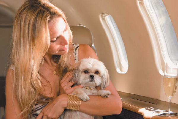 Woman with a dog on an airplane.