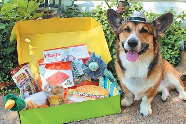 Pet Treater Monthly Pet Box.