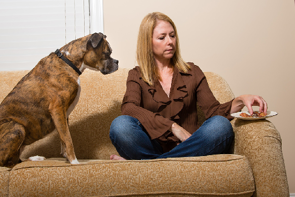 A dog staring at a woman eating bacon.