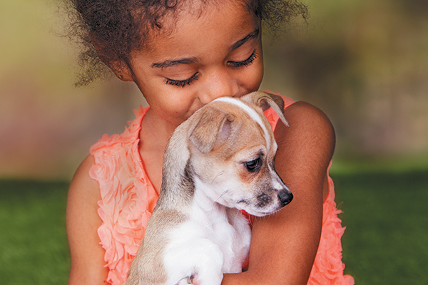We all love puppies, but when it comes to the reality of living with one, more research makes for a better fit. Photography © adogslifephoto | Getty Images.