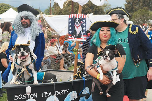 Ahoy, doggies! These Boston Terriers took the 2016 Best in Show at the 16th annual Haute Dog Howl'oween Parade in Long Beach, California.