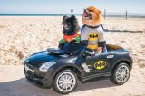 Last year's Howl-O-Ween Pet Parade Honorable Mention winners Batman and Robin prove that dogs can look great in capes, too!
