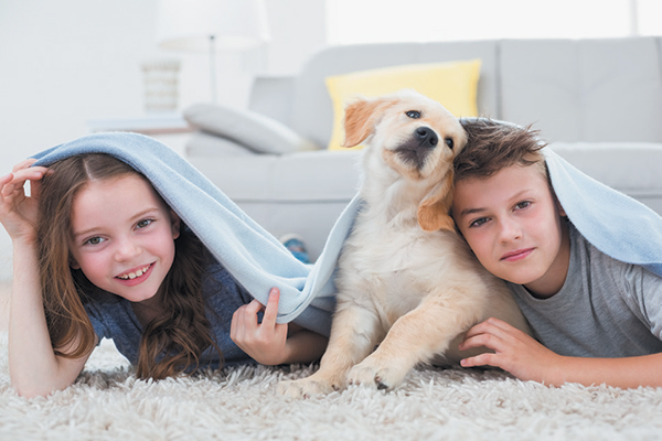 Puppy training is a necessary foundation for a good life. Photography ©Wavebreakmedia | Getty Images.