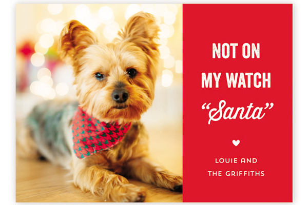 Minted has the perfect holiday cards that feature your pup.